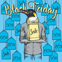 Vector illustration of penguin on Black Friday
