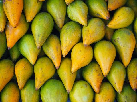 Lucuma fruit background