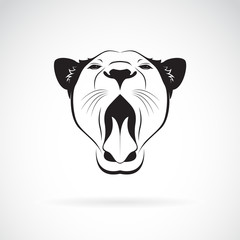 Vector of a female lion open mouth on white background. Wild Animals.