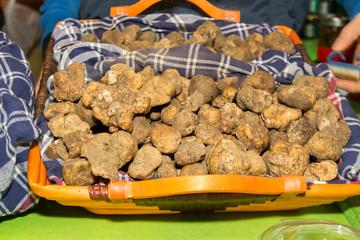 tartufo prodotto tipico
