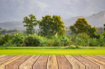 empty dark desk table and grass space of green forest and sunset blurred green background garden bokeh for a catering or food ,with bokeh image,can be used for montage or display your products