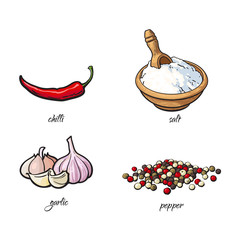 vector flat cartoon sketch hand drawn Spices, seasoning, flavorings and kitchen herbs set. Red chili and black pepper, garlic and white salt. Isolated illustration on a white background