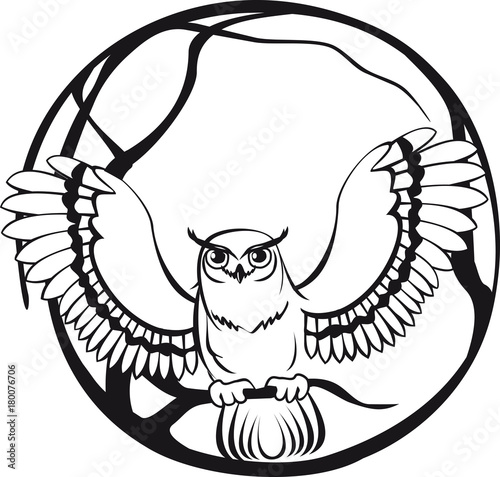Black And White Owl Sitting On A Branch Tree Circular Design Stock