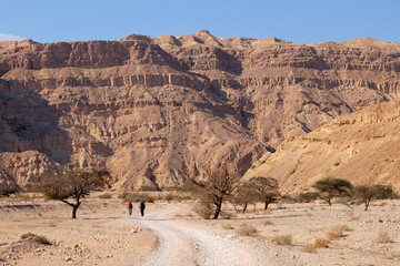 Unrecognized couple of hikers walking on the road in Negev desert.