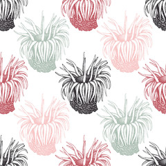 Hand drawn actinia - sea flower background. Vector underwater natural elements. Vintage sea life illustration on white background. Anemone seamless pattern
