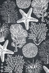 Vector frame with hand drawn sea corals, fish, stars sketch. Vintage background with underwater natural elements. Decorative sealife illustration on chalkboard. Wedding design.