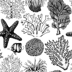 Seamless pattern with hand drawn sea fans corals - gorgonia sketch. Vector background with underwater natural elements. Vintage sealife illustration.