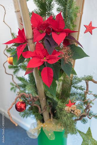 Weihnachtsdekoration Mit Bambus Und Weihnachtsstern Stock Photo And