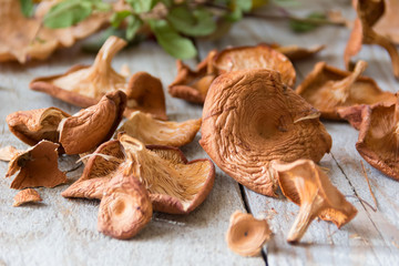 Dried mushrooms, chanterelles