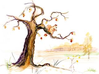 Old oak in fall