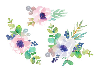 Floral composition of anemones and eucalyptus on a white background. Watercolor illustration