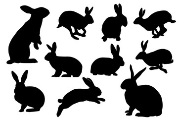 bunny silhouette sets