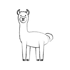 cartoon alpaca icon over white background vector illustration