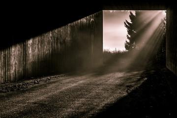 Sonne zeichnet Sonnenstrahlen in den Nebel am Ende des Tunnels