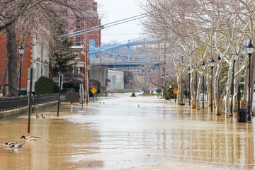 Flooded Street Near River