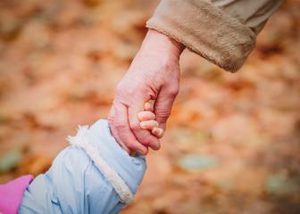 grandmother holding grandchild hand