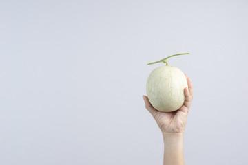Hand holding cantaloupe melon