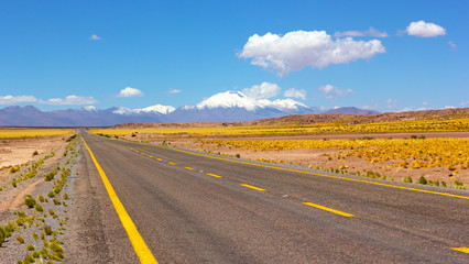 A road leading to snowy volcanic mountains, Chile, North America. Atacama Desert panorama with empty road, grass land and mountains on horizon.