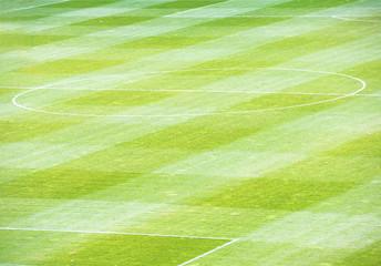 Football soccer green field on the stadium