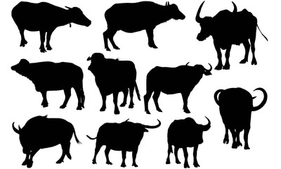 Water buffalo Silhouette Vector Graphics