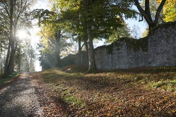 Park auf der Honberg auf der Ruine Honburg in Tuttlingen in Süddeutschland in der Nähe von der Schweiz