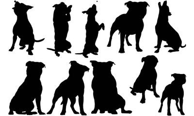 Staffordshire Bull Terrier Dog Silhouette Vector Graphics