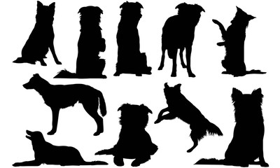 Border Collie Dog Silhouette Vector Graphics