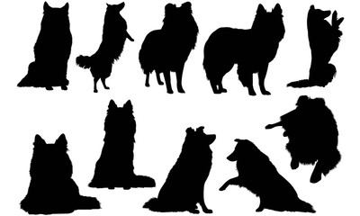 Shetland Sheepdog Dog Silhouette Vector Graphics