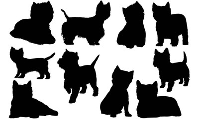 West Highland White Terrier Silhouette Vector Graphics
