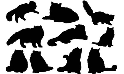 Persian Cat Silhouette Vector Graphics