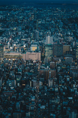 Tokyo cityscape as seen from above aerial photography of Tokyo city, Japan