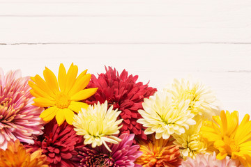 chrysanthemums on white wooden background