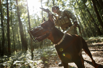 Picture of airsoft player with dog and submachine gun