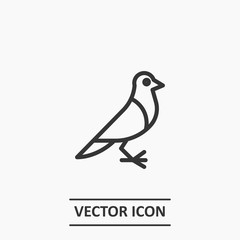 Outline pigeon icon illustration vector symbol