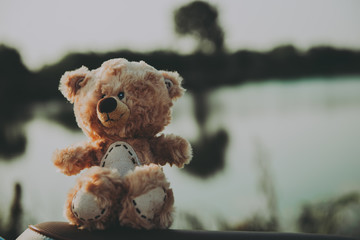 Alone teddy bear out door vintage dark tone style