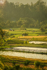 Ricefields of the Sidemen Valley, Bali, Indonesia. One of the most beautiful areas of Bali is the rice terraces of the Sidemen Valley in east Bali, Indonesia.