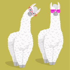 set of cute cartoon lama alpaca in trendy glasses. Vector Illustration. unique design for cards, posters, t-shirts, invitations, patch and stickers