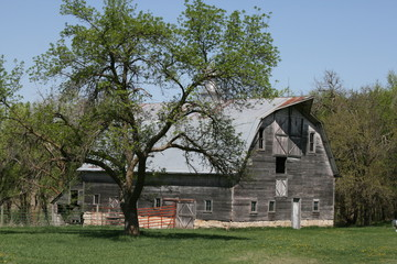 Grand Old Barns that dot our landscape