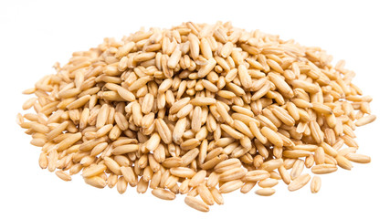 Oat Grains. Pile of grains, isolated white background.