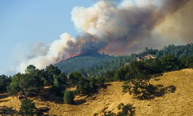Fire Burning on Ridge