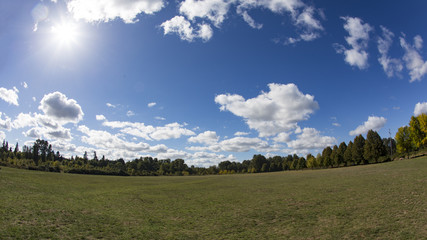 Stylized Fisheye View of  Park with White Clouds Against  Blue, Sunlit Sky