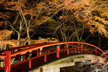 群馬県渋川市伊香保温泉のライトアップされた夜の河鹿橋