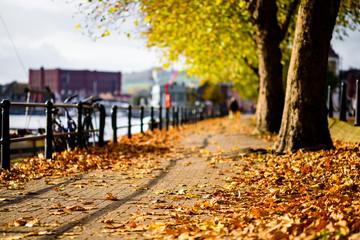 Bristol harbourside autumn