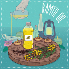 Plastic Bottle of Ramtil oil and Guizotia abyssinica plant. Hand filling ancient oil lamp. Natural vegetable oil used as fuel for oil lamp