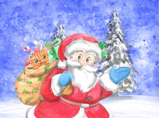 Traditional Santa Claus with cat in sack