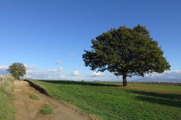 escursione in campagna