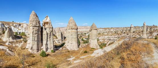 Volcanic tuff Rocks named fairy chimneys or mushrooms at sunset in Cappadocia, Turkey