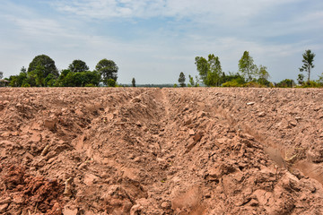 Cultivating plowing for monoculture of cassava in agriculture, Southeast Asia, Cambodia, Thailand
