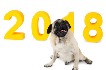 Yellow inscription 2018, next to it a small dog sits. Symbol of the new year. Isolation.