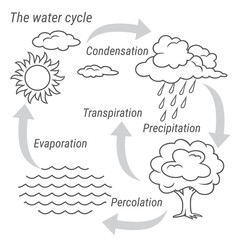 Water Cycle Black and white. Vector schematic representation of the water cycle in nature. Illustration of diagram water cycle. Cycle water in nature environment.